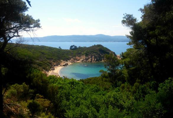 Krifi Ammos Najlepše Plaže Ostrva Skiatos