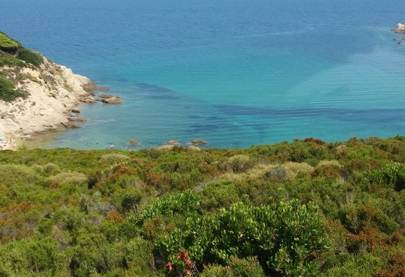 Krifi Ammos Skiatos tirkizno more Grčka