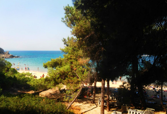 Prelepa plaža banana Skiatos
