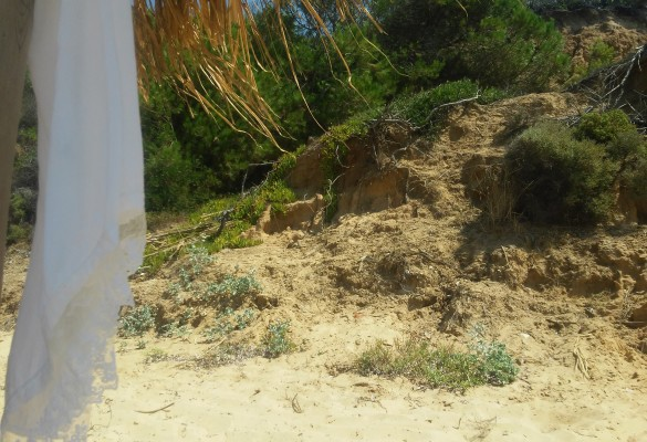Plaža Mandraki Skiatos Slika 2