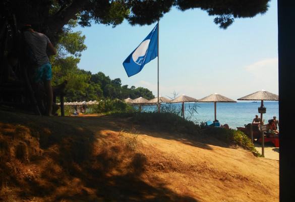 Marata Skiatos Grčka Bar na Plaži